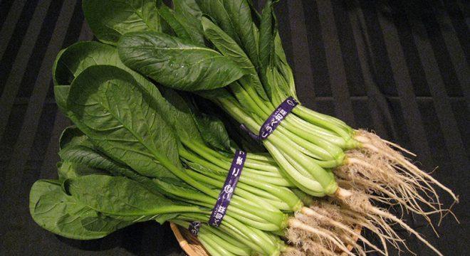 小松菜の画像
