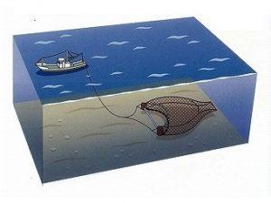 小型底びき網漁
